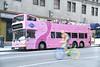 Pink Bus<br /> photo by Rob Rich/SocietyAllure.com © 2013 robwayne1@aol.com 516-676-3939