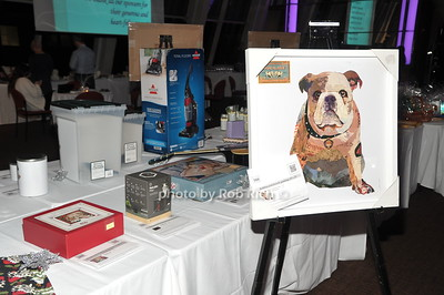 Bash for Bulldogs 2017