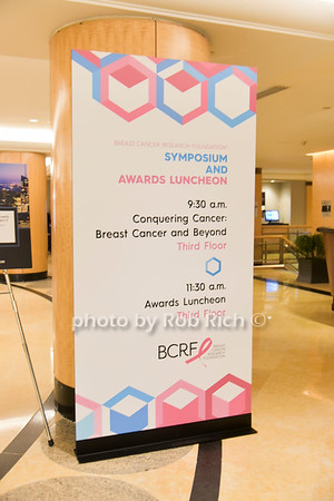 Breast Cancer Research Foundation 2017 Symposium & AwardLuncheon