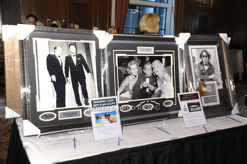 Silent Auction items<br />   photo  by Rob Rich © 2013 robwayne1@aol.com 516-676-3939