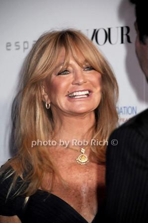 Goldie Hawn photo by Rob Rich/SocietyAllure.com © 2013 robwayne1@aol.com 516-676-3939