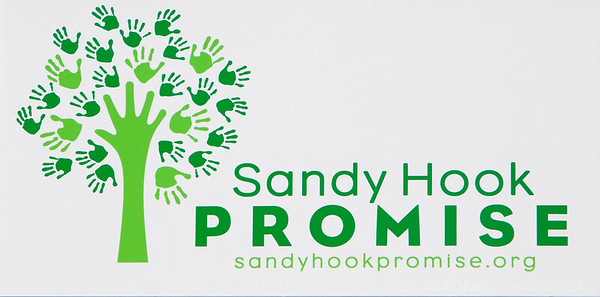 2016 Run Sandy Hook Promise Sonoma