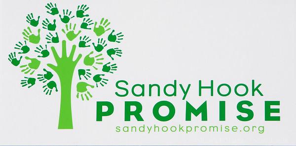 2016 Run Sandy Hook Promise Sonoma