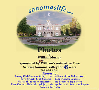 sonoma life care willams2010