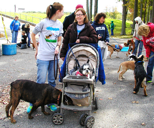 Debbie Blank | The Herald-Tribune<br /> Katie Brandes (left), Batesville, and her mom, Doris, chat as their dogs, a boxer/lab mix named Cocoa and Shih Tzu named Pokey amuse themselves before walks begin at Liberty Bark Walk 2014 Oct. 5, 2014.