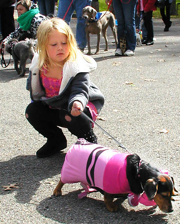Debbie Blank | The Herald-Tribune<br /> Many dogs were wearing costumes, including a beagle/dachshund mix being walked by Molly Abel, 5, Batesville.