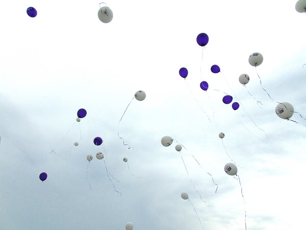 Diane Raver | The Herald-Tribune<br /> With hopeful spirits, cancer survivors and caregivers released purple and white balloons, respectively, at the beginning of the event.