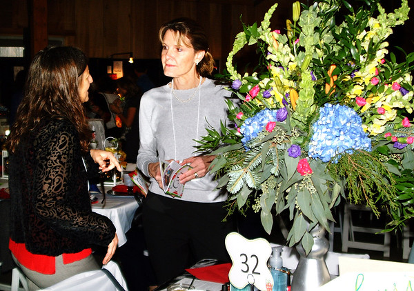 Debbie Blank | The Herald-Tribune<br /> Brenda Skinner (left) and Dr. Elisabeth Kelley of Children's Health Care chat at the Safe Passage fundraiser.
