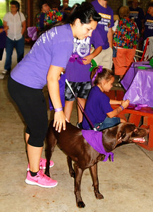 Debbie Blank | The Herald-Tribune Alisha Flodder, Oldenburg, gets a friend's Weimaraner ready to walk. She was there to remember Kristy Crum's late grandmother Beverly Ann Bowen, who had the disease.