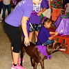 Debbie Blank | The Herald-Tribune<br /> Alisha Flodder, Oldenburg, gets a friend's Weimaraner ready to walk. She was there to remember Kristy Crum's late grandmother Beverly Ann Bowen, who had the disease.
