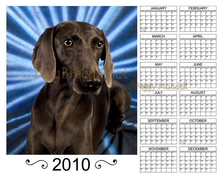 Calendar2010ZOEVert8x10