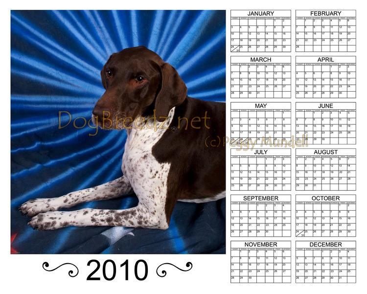 Calendar2010KAISERVert8x10