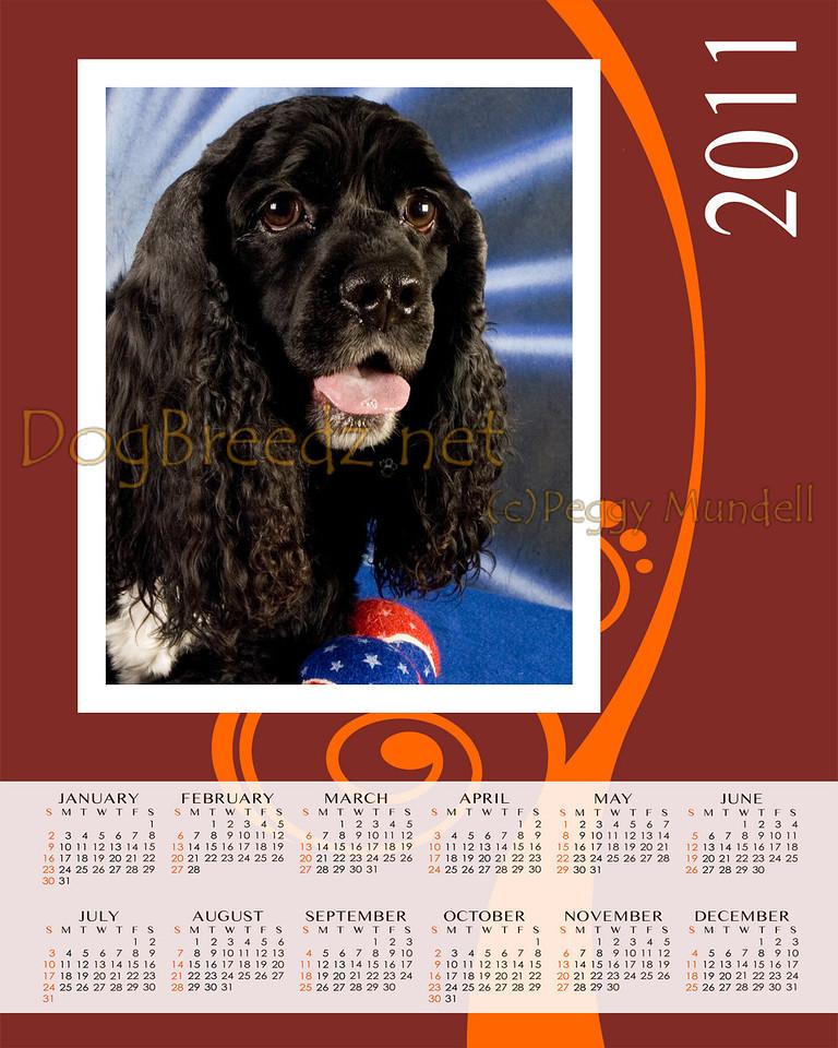 Calendar2011Vert8x10