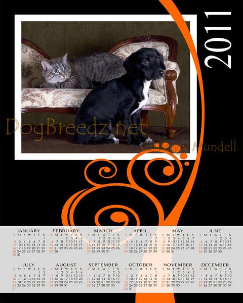Calendar2011Vert8x10-2