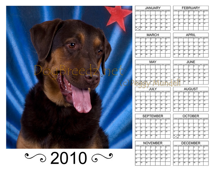 Calendar2010SCARLETTVert8x10