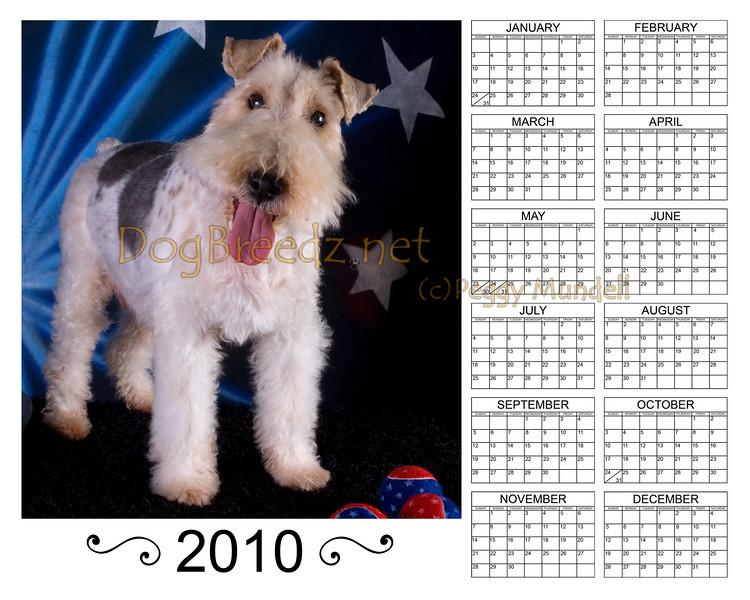 Calendar2010Vert8x10