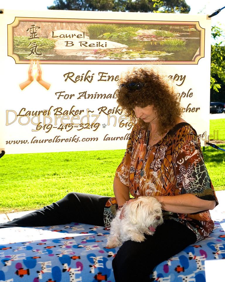 Laurel B Reiki Animal Healing
