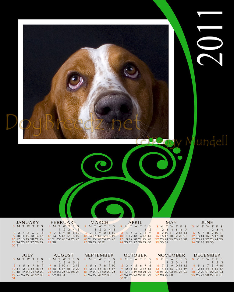 2011 Calendar in sizes:  8x10, 11x14 or 16x20