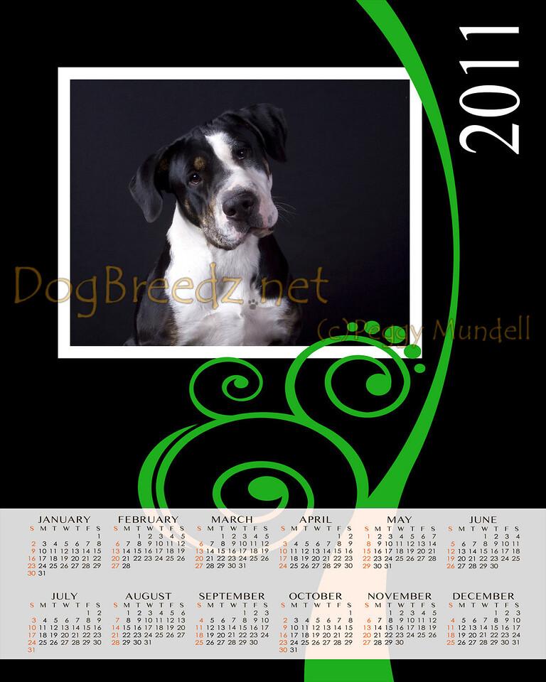 2011 Calendar in sizes:  8x10, 11x14 or 16x20