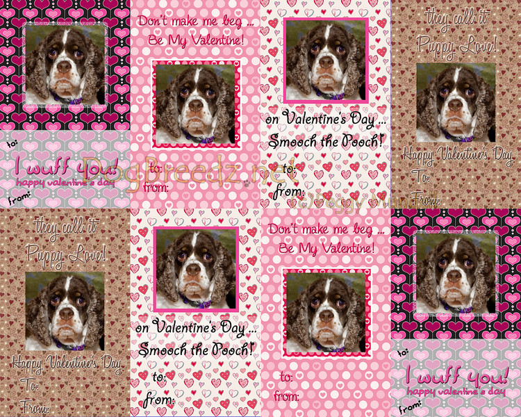Set of 8 Mini Valentines - just cut apart and hand out for a great Valentines - perfect for the Therapy Dog on visits, or for your Groomer, Veterinarian, Dog Sitter and Day Care professionals!