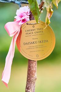 16   SGI Cherry Tree Dedication Loring Park MN  10-2-2020