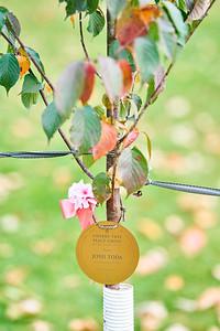 6   SGI Cherry Tree Dedication Loring Park MN  10-2-2020
