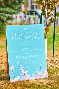18   SGI Cherry Tree Dedication Loring Park MN  10-2-2020