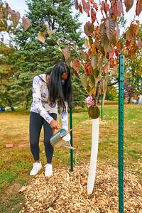 33   SGI Cherry Tree Dedication Loring Park MN  10-2-2020
