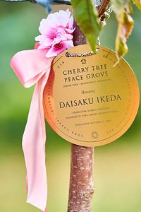 14   SGI Cherry Tree Dedication Loring Park MN  10-2-2020