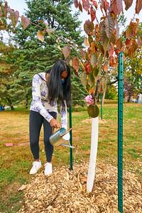 34   SGI Cherry Tree Dedication Loring Park MN  10-2-2020