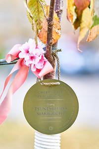 8   SGI Cherry Tree Dedication Loring Park MN  10-2-2020