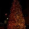 Santa-Monica-Event-Photographer-Swimwithheart-261