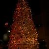 Santa-Monica-Event-Photographer-Swimwithheart-259