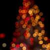 Santa-Monica-Event-Photographer-Swimwithheart-088