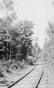 2021.009.RPPC.012--charles stats RPPC--CMStP&P--view of tracks and right-of-way--near Trout Lake WI--c1930 0000