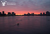 Charles River Blues : 8 galleries with 2113 photos