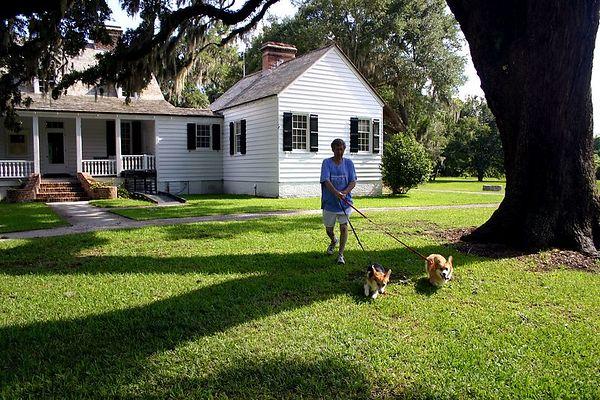Charleston Area Gardens