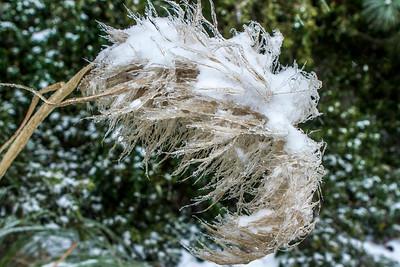 Charleston Snowfall Jan. 2018