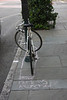 bicycle bike charleston sc joan perry