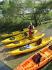 Shem Creek Coastal Expeditions Joan Perry Charleston