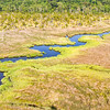 Creeks and marsh, Cainhoy, SC