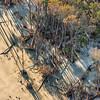 Bulls Bay Boneyard Beach