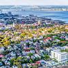 Downtown Charleston peninsula and the Ravenel Bridge
