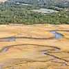 Golden marsh Grass and creeks, James Island