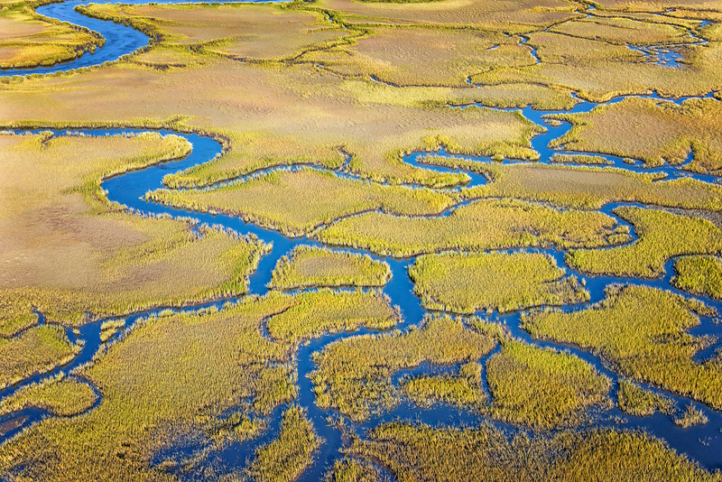 Flooded Marshes and Creeks of the Stono River, James Island