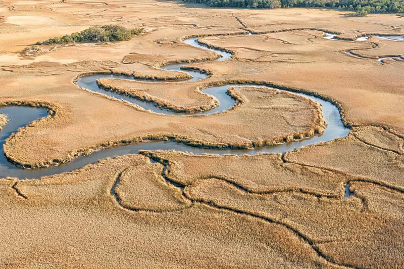 John's Island marsh and creeks