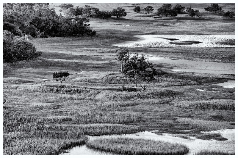 Kiawah Marshes and Creeks B&W