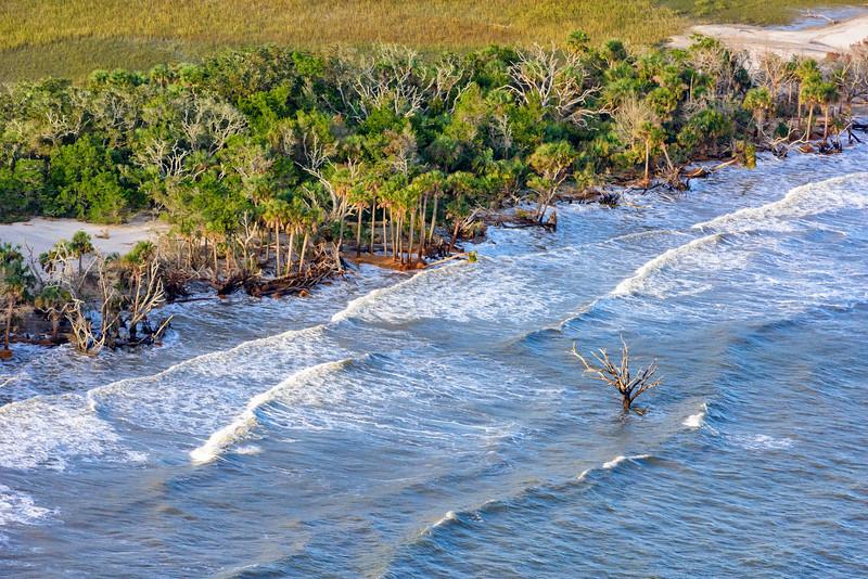 Botany Bay Beach after Hurricane Matthew
