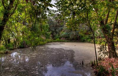 plantation-swamp