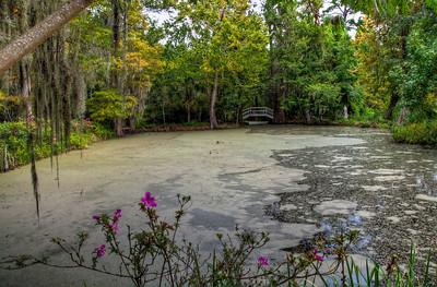 magnolia-plantation-swamp